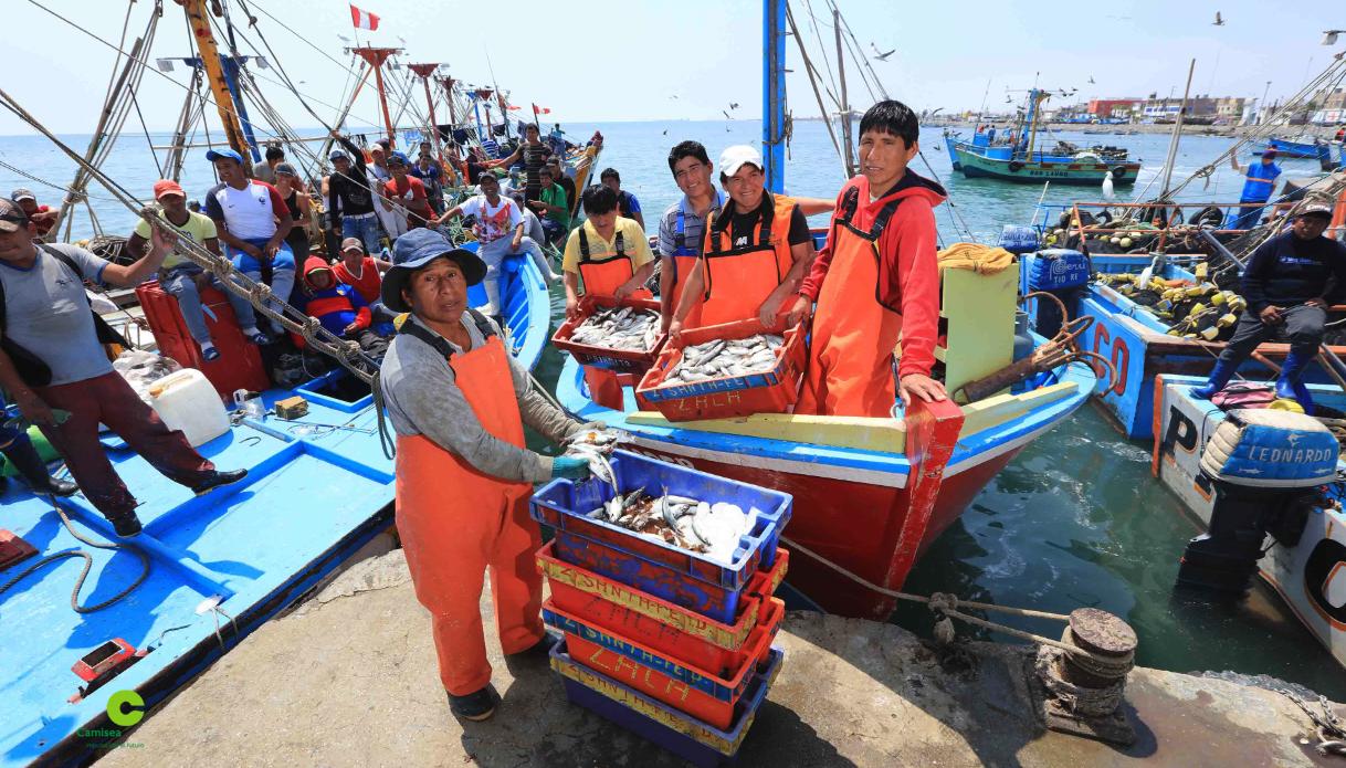 Camisea invierte más de S/ 4 millones en moderno Desembarcadero para pescadores de Pisco