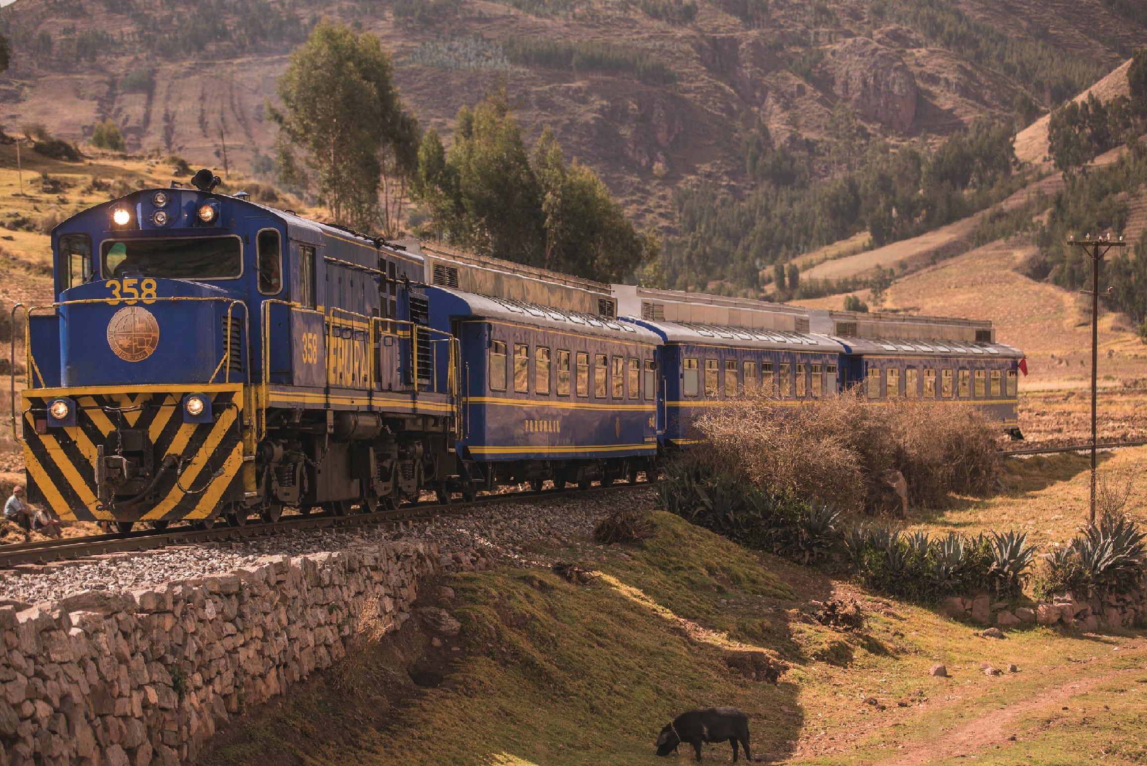 Viaja a Machu Picchu con tarifas desde S/ 15 en trenes turísticos