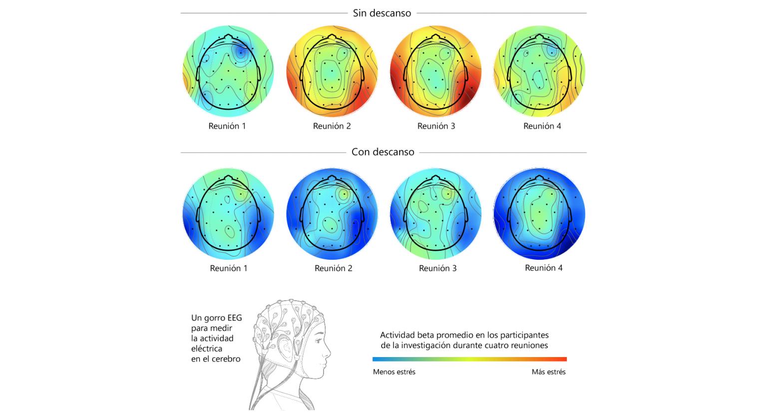 Investigación de Microsoft sobre ondas cerebrales revela que descansos cortos pueden combatir el estrés y la fatiga por reuniones