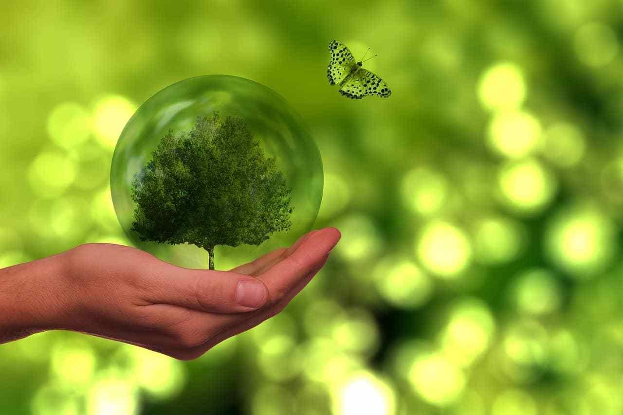 Posicionamiento comercial de productos sostenibles