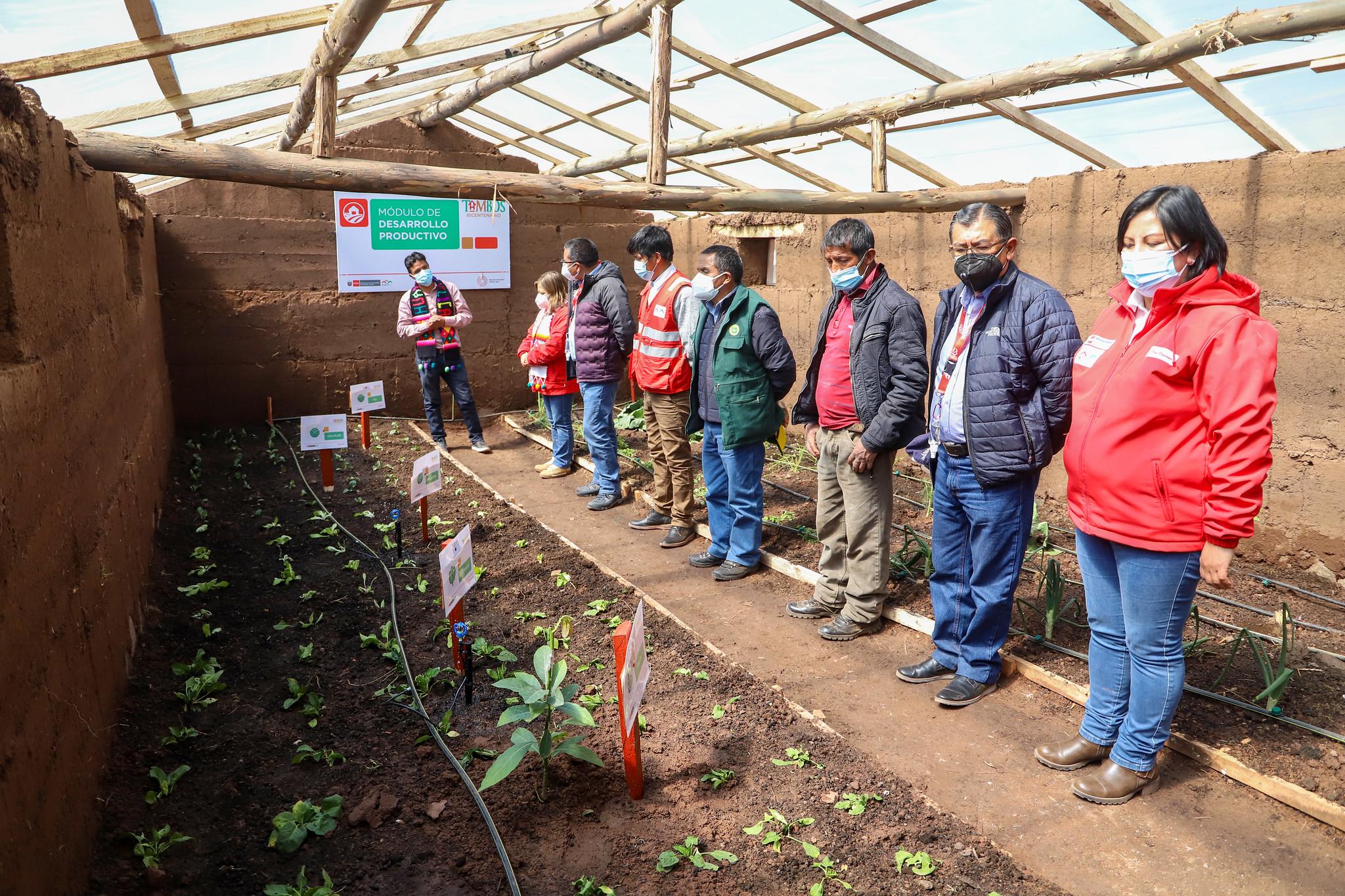 Pobladores huancavelicanos desarrollan emprendimientos en horticultura tras capacitarse en Tambo Bicentenario Lindapampa