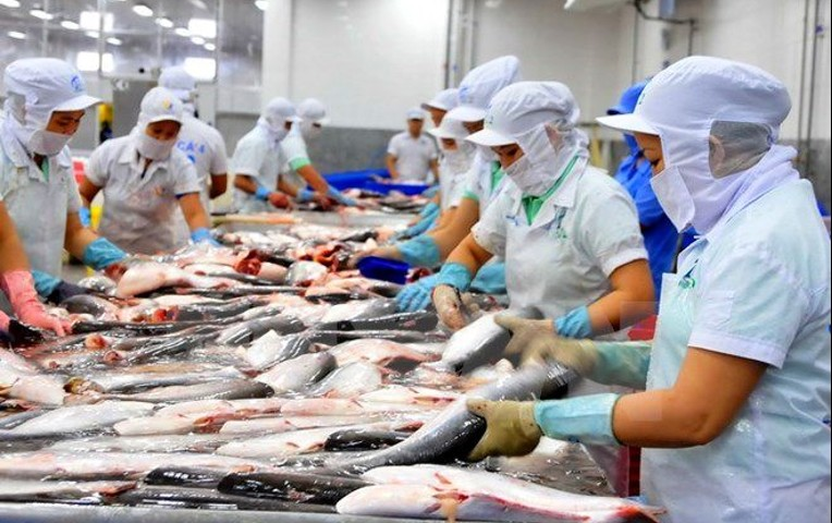 Embarcaciones pesqueras extranjeras no dejan el 30 por ciento del atún extraído en aguas peruanas